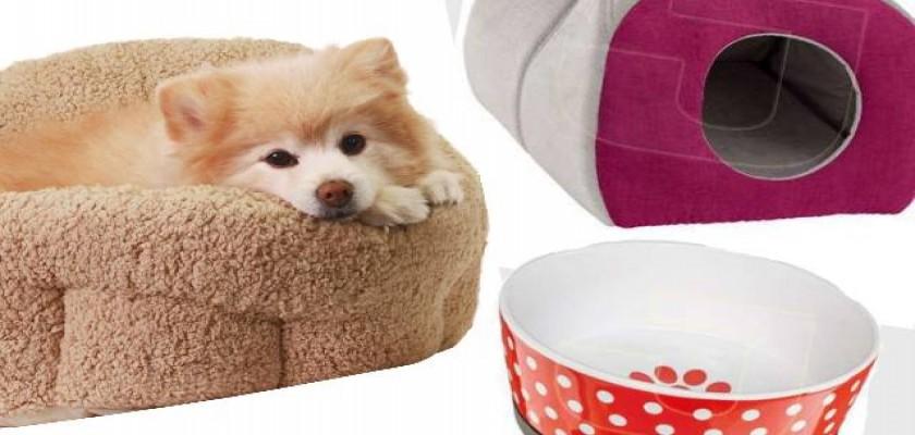 Evcil Hayvanınız İçin En İyi Ürünler