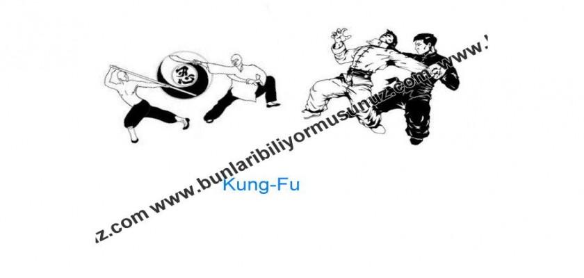 Kung-Fu Hakkında Bilmedikleriniz