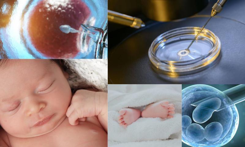Tüp Bebekte İlaçsız Tedavi